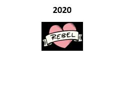 Rådgiver da Rebel Spirits gjennomførte rettet emisjon og folkefinansiering