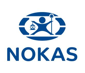 Etablering av markedsstrategi for NOKAS AS